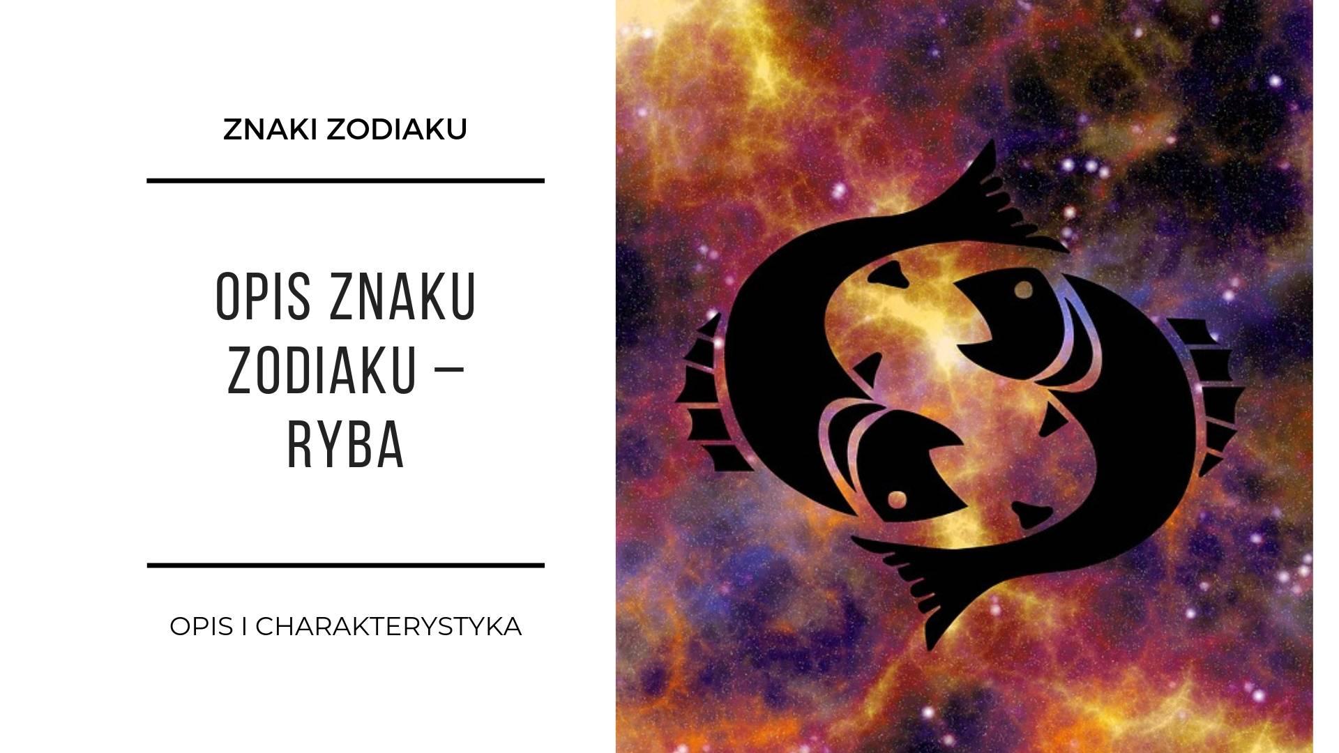 Znaki zodiaku 2
