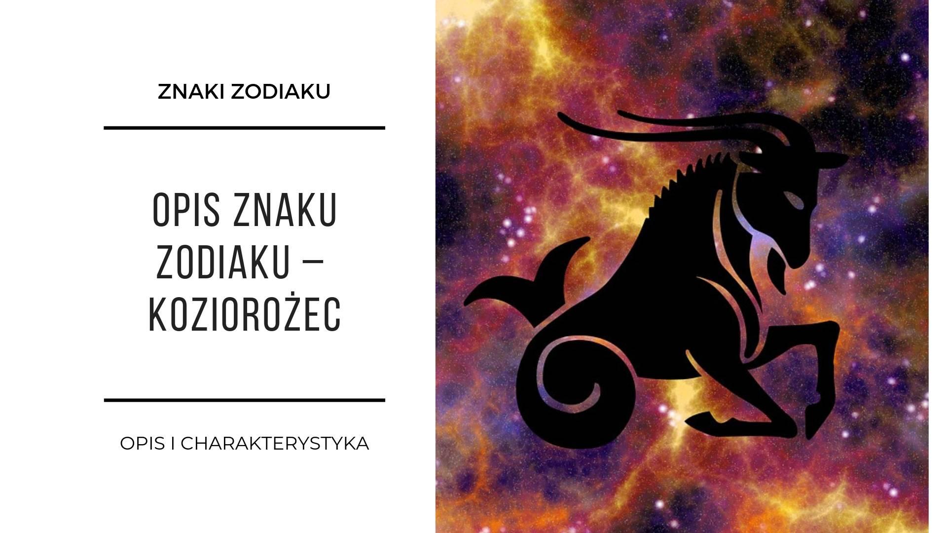 Znaki zodiaku 12