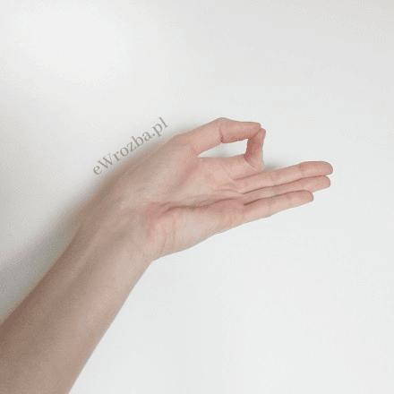 Mudry – co to jest? Magia w dłoniach 3