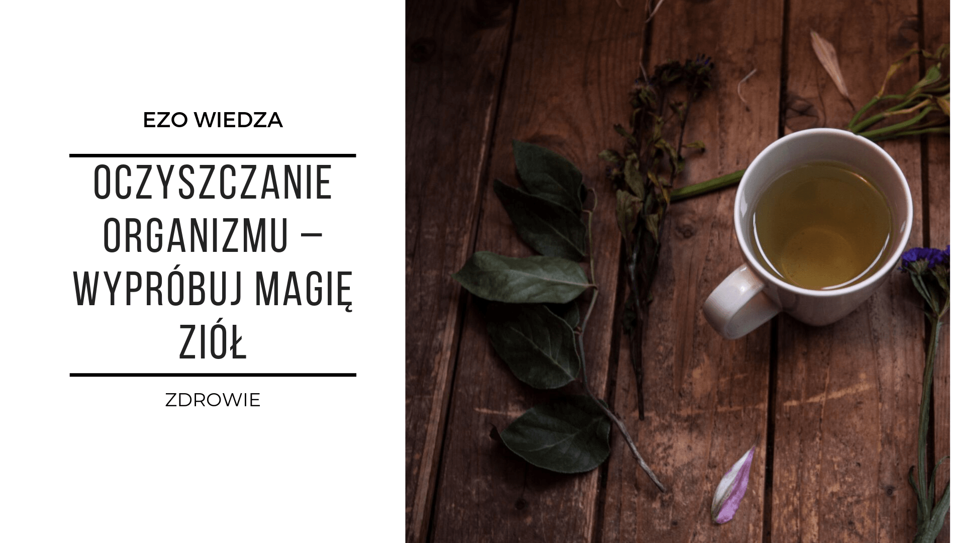 Oczyszczanie organizmu – wypróbuj magię ziół! 2